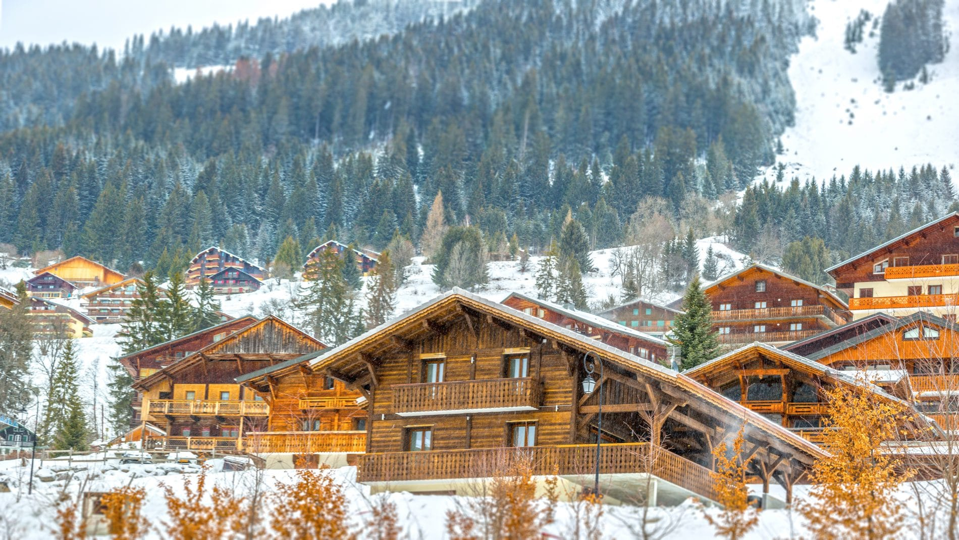 Chalet Chante Merle